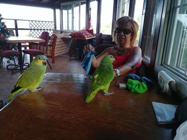 Page and Ginger meeting and greeting guests at Las Cuevas Beach Lodge