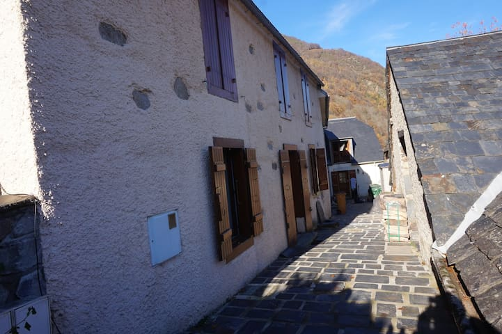 maison de montagne pour skieurs ou randonneurs - Viscos - House