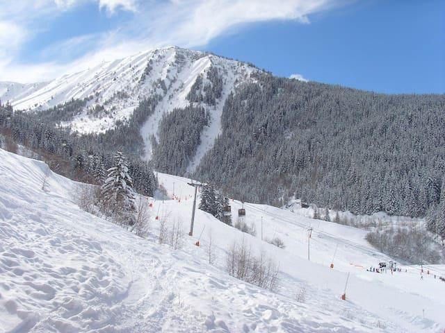 Oz/Alpe d'Huez Chalet des Neiges - Pied des pistes