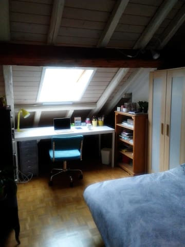Cosy room in cute attic flat (city centre)