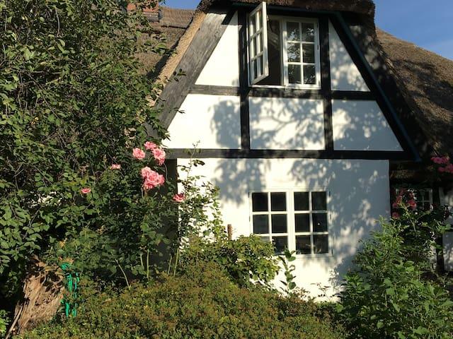 Historisches Traumhaus (Müritz) - Leizen - Talo