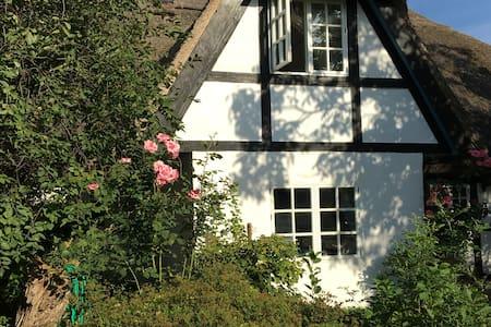 Historisches Traumhaus (Müritz) - Leizen - Rumah