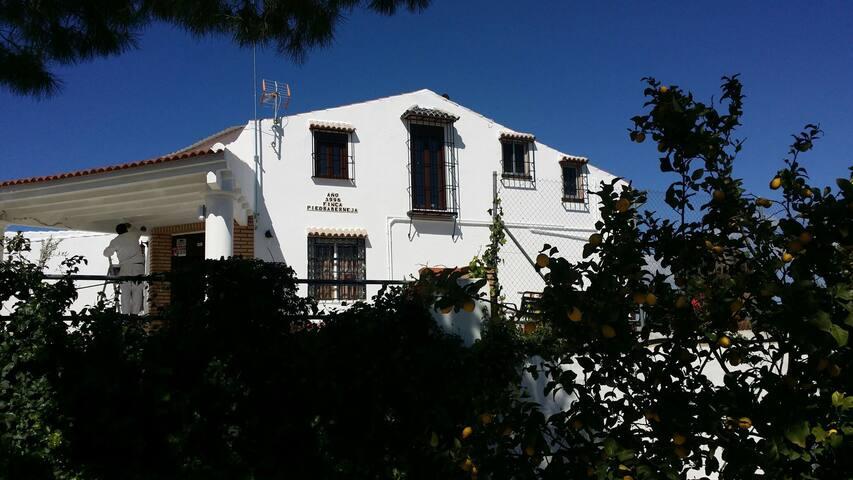 Casa rural Piedrabermeja, Castro del Río, Cordoba - Castro del Río - Casa