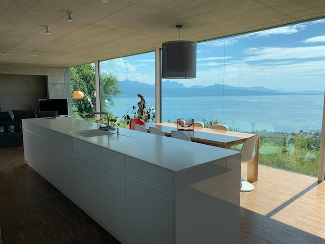 Luxury villa, amazing  views over Lake Geneva
