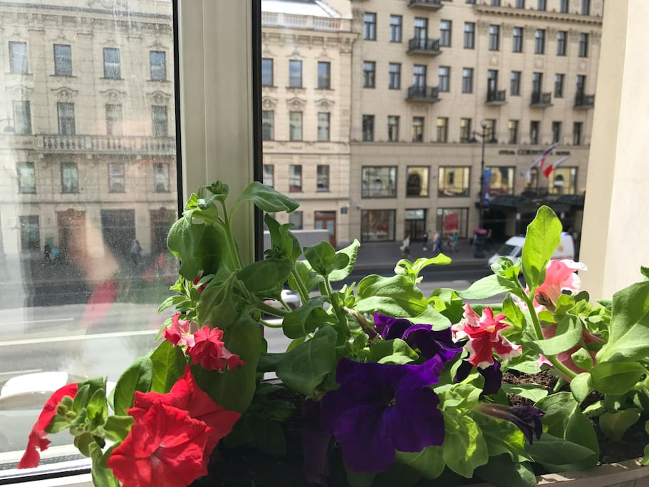View from windows Nevsky prospect Main Street