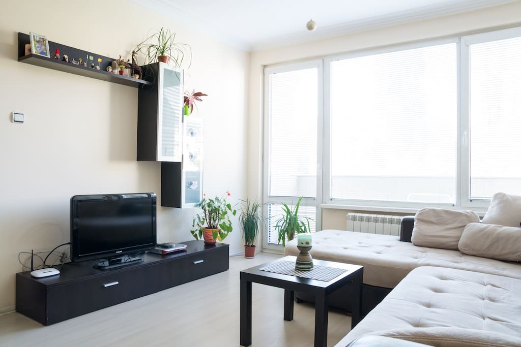 Very light and large living room with balcony