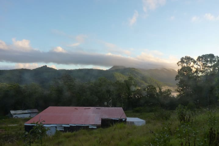 Secluded Mountain Eco-House w World Heritage Views - Byrrill Creek - Rumah
