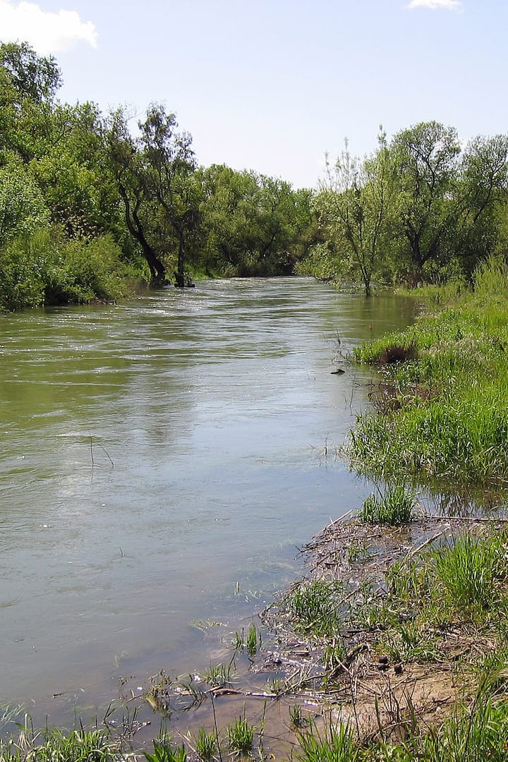 One section of Putah Creek