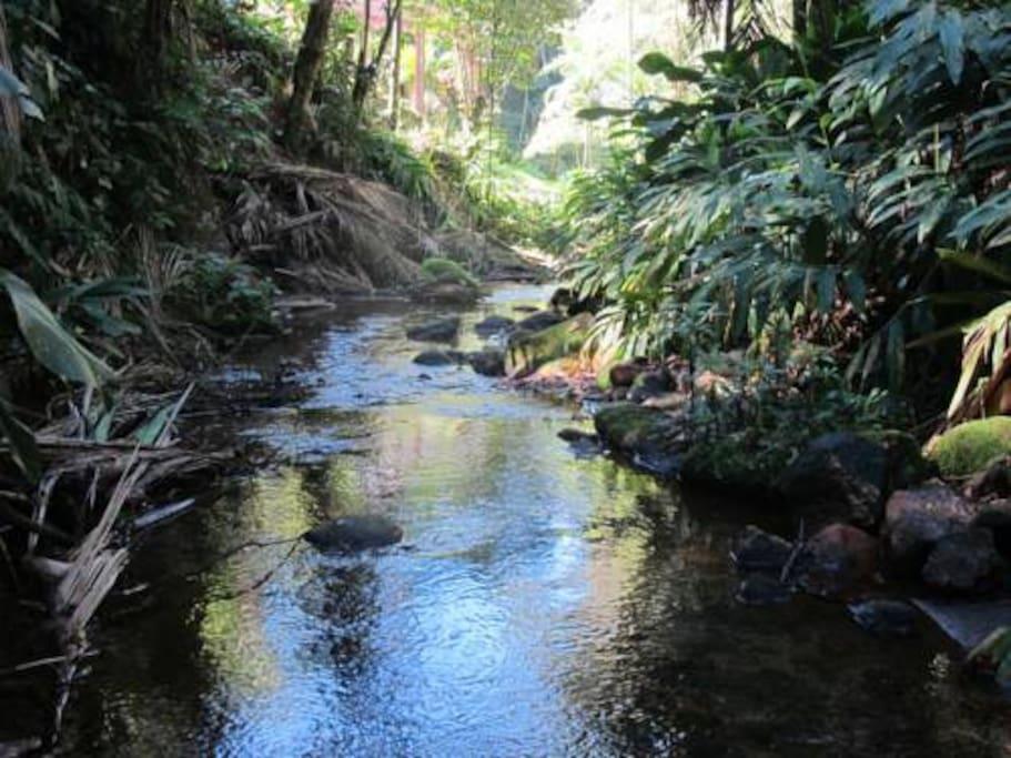 Rio Santiago com águas cristalinas passa em frente.