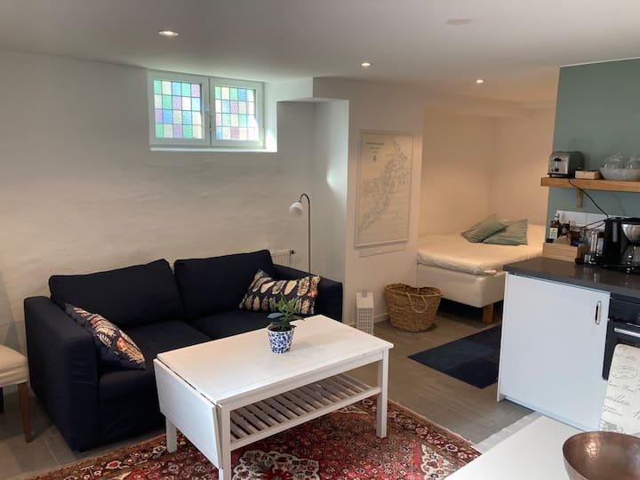 Nyrenoverad lägenhet nära både natur och city