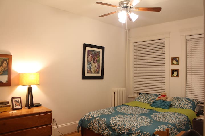 Cozy But No Clutter! Right by the T - Brookline - Appartement en résidence