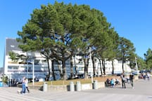 "La résidence ""Les Glénan"" vue de la promenade de la plage"
