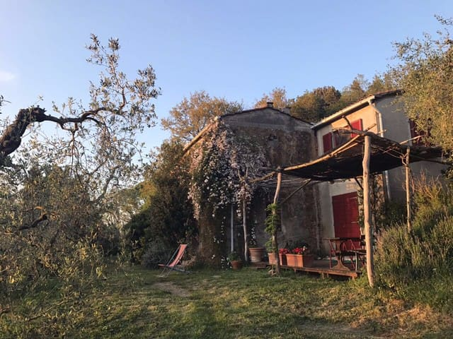 Organic farm near the sea in beautiful Tuscany - Castagneto Carducci - Dům