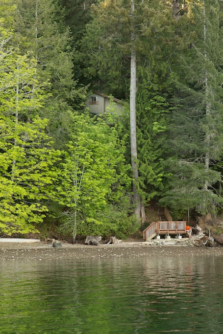 Looking back at our cabin, hidden in the trees.