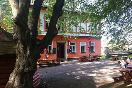 Penzion pod Sedlem - Sušice - Bed & Breakfast