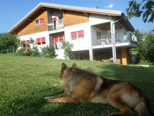 casa Marignoli