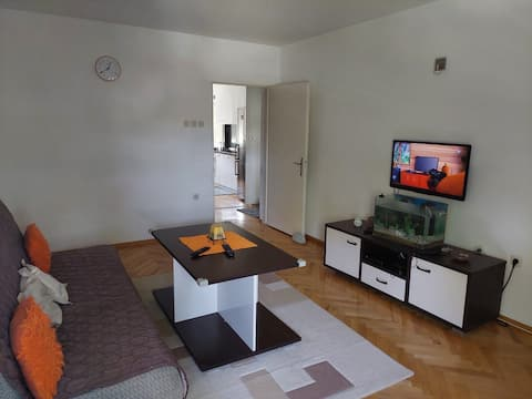 Private room in new apartment