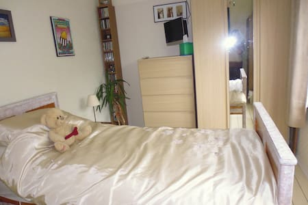 Nice Clean Room Hounslow W.London - Apartamento