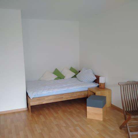 Studio für Geschäftsreisende - Braunschweig - Apartment