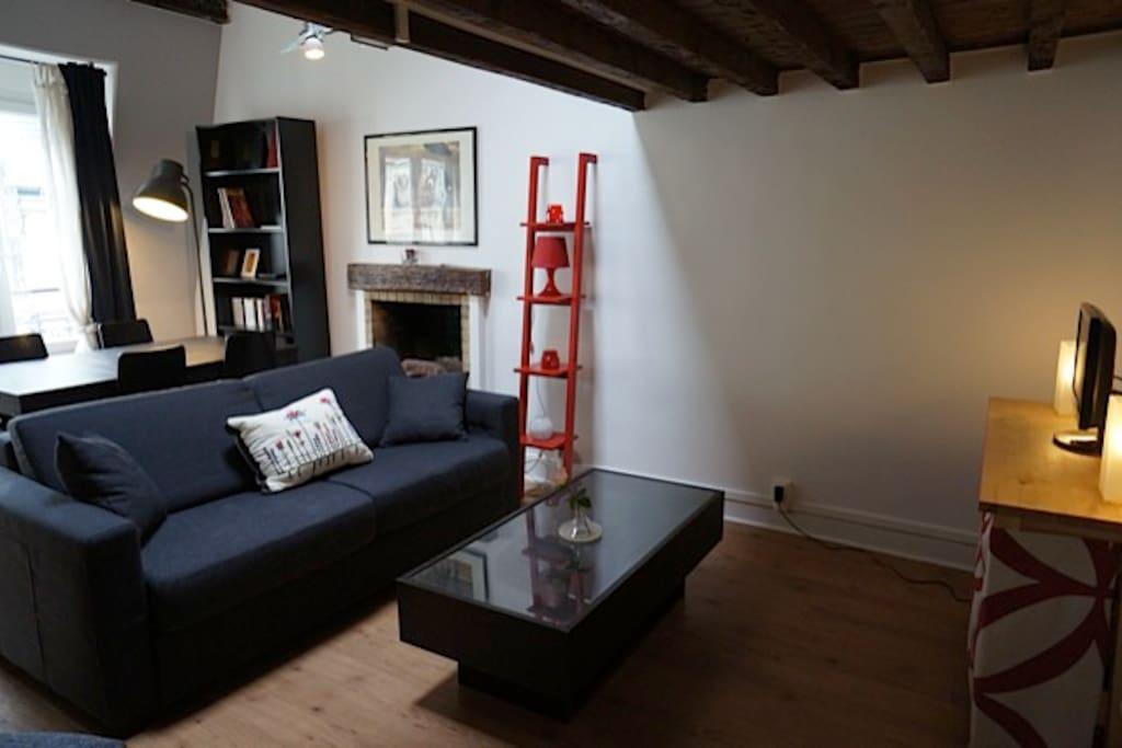 rive gauche sous les toits appartements louer paris le de france france. Black Bedroom Furniture Sets. Home Design Ideas