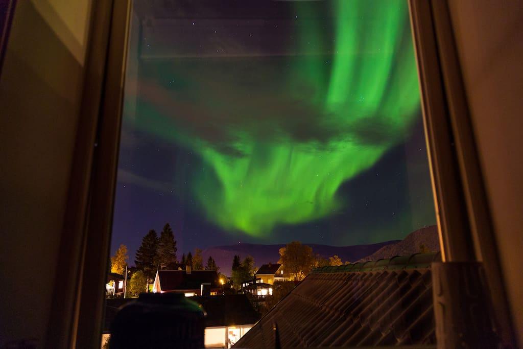 From inside room window