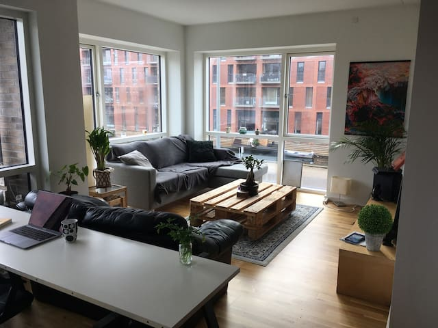 Big room in modern apartment