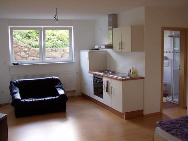 Voll Möbelierte Wohnung 1 Woche  - Tabarz - Apartment