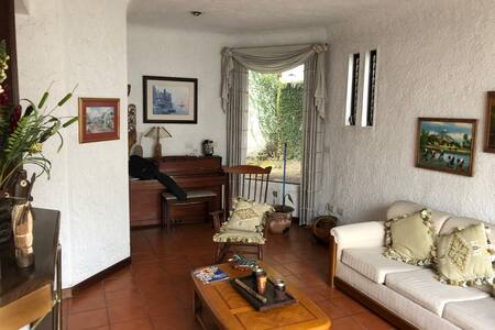 Serene cozy environmental home