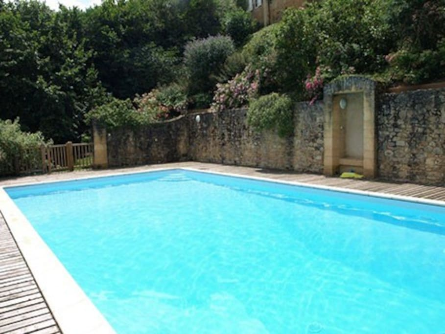 Swimming pool 12x6m completely private