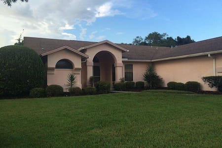 Beautiful home with pool in Pasco County - House