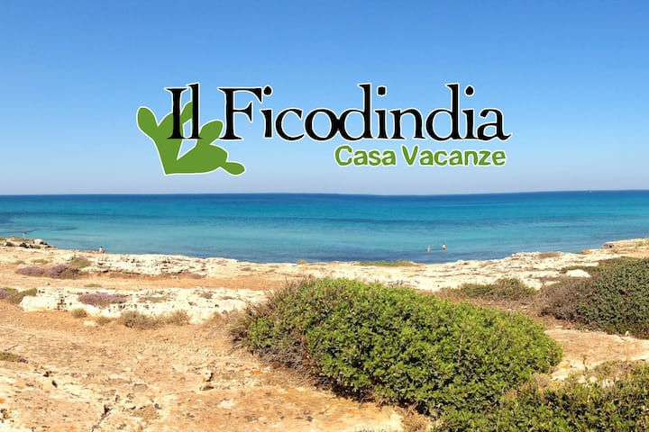 Il Ficodindia Holiday House 2