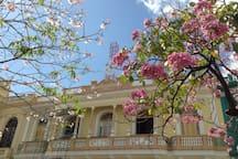 Parque Vidal en Primavera, fotografía de Antoine