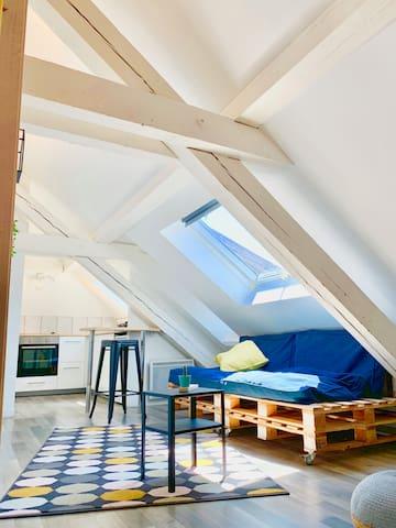 Appartement Cocooning à Strasbourg - 2P