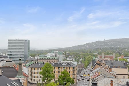 Fresh, central flat 2 bedrooms with rooftop - Oslo