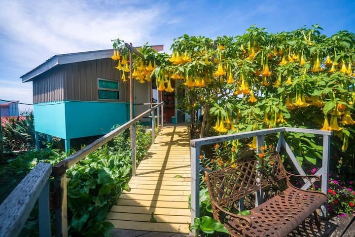 Garden Hut @ Kopi Valley, Kundasang Sabah