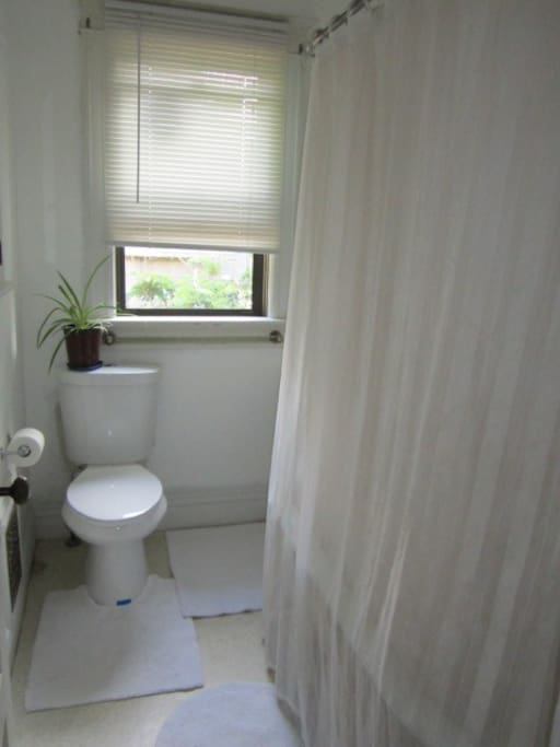 Bathroom in hallway, private if there are no other guests in the house
