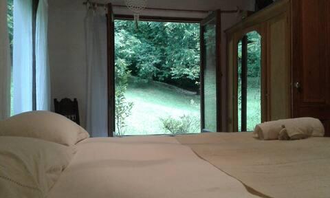 La Flor Azul. Dormitorio Caña Ambar