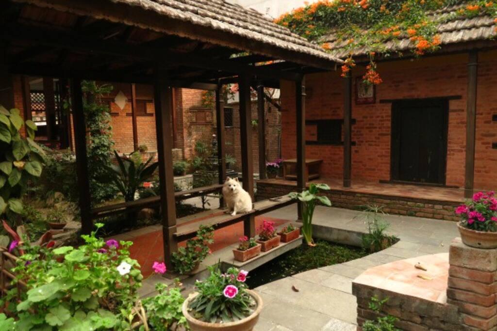 Pavilion structure in garden...