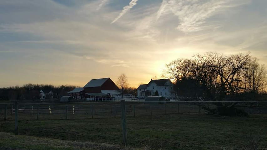 Rainbow Ridge Farm