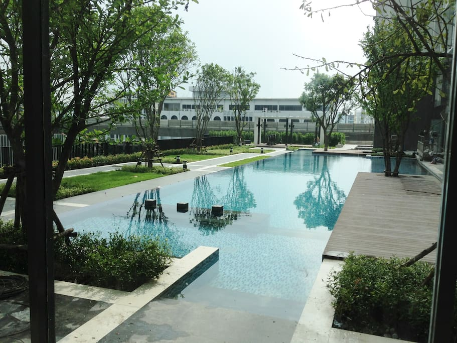 Large modern swimming pool with trees