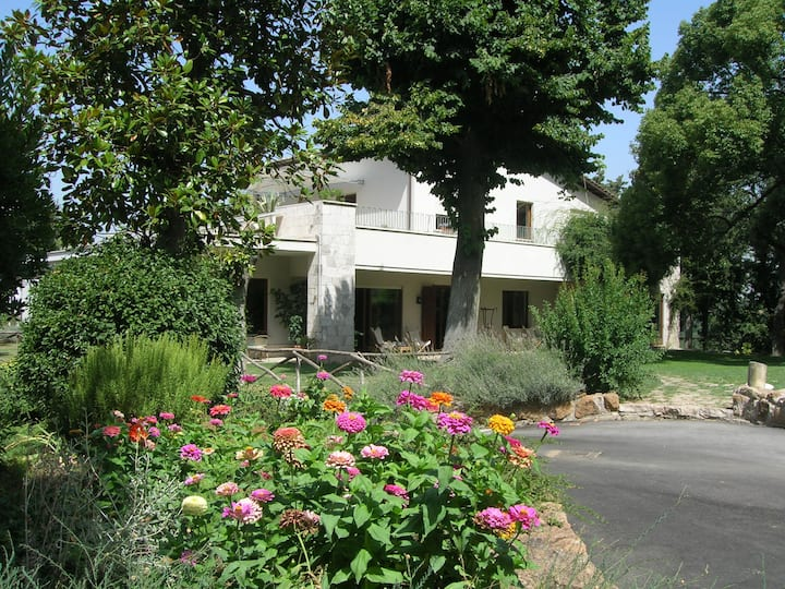 Bed & Breakfast  Relais  La Canfora