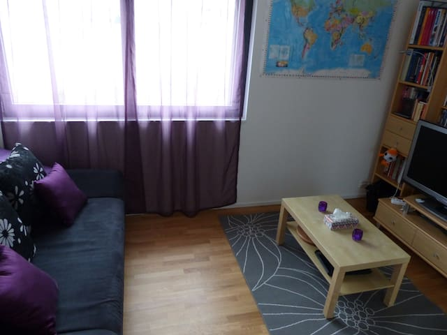 Modern room in the nature, 4 km from Bern centre - Herrenschwanden - Apartment