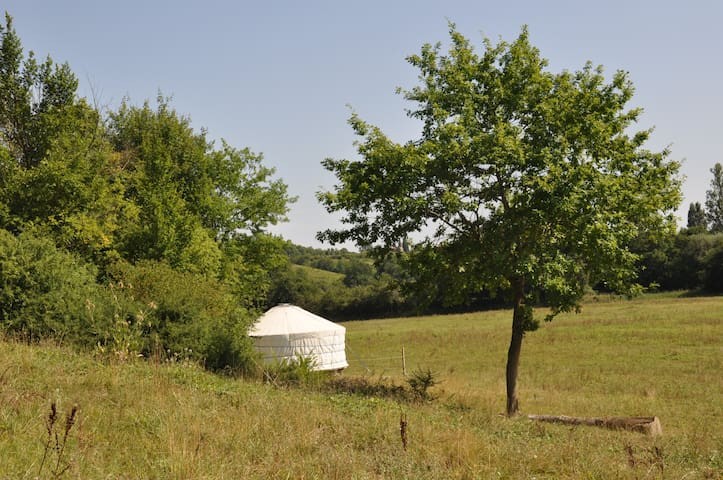Yurt in secluded field at riding centre - Belmont - Yurt