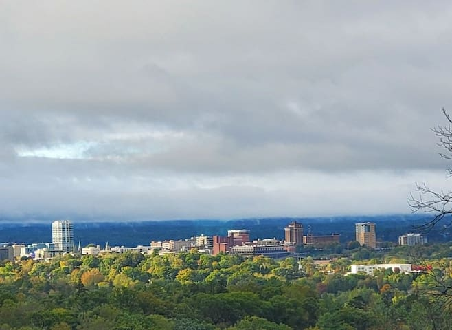 Views Downtown Asheville 5 min away Luxury NewHome