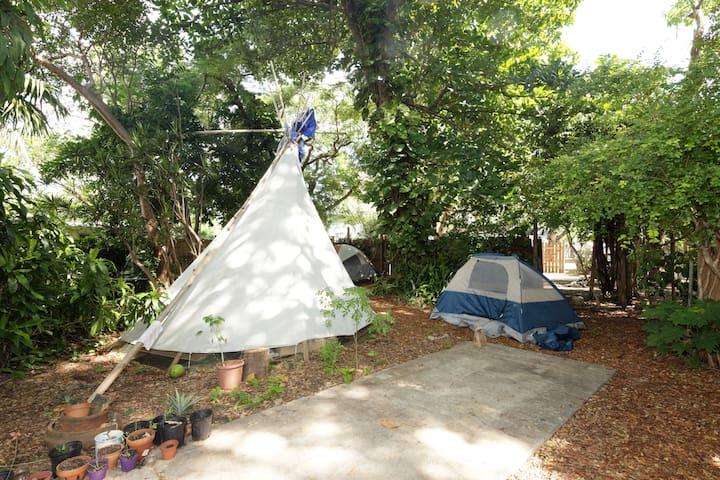Farm volunteers stay in tents