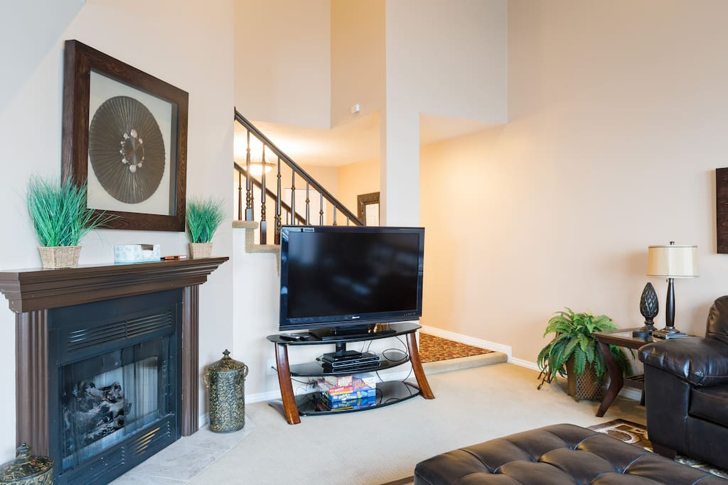 gas fireplace and t.v. in living room