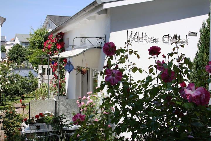 """Villa """"Wildrose Ahlbeck"""", Binz - Binz - Huis"""