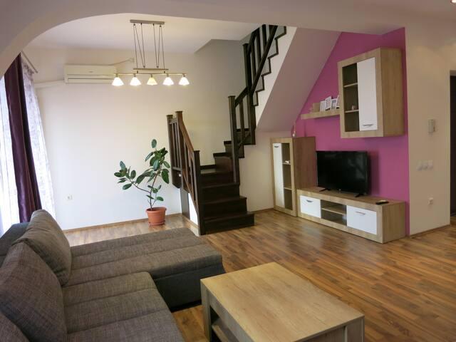 Penthouse Apartament Nufarul Oradea