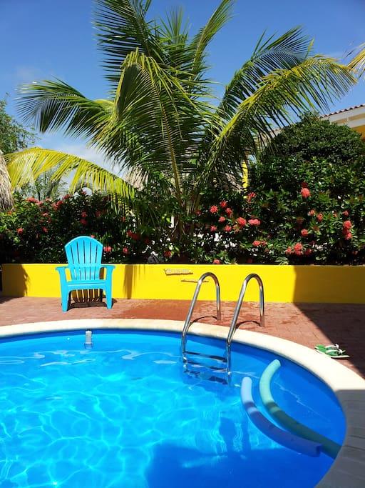 Heerlijk relaxen onder de palmen bij het zwembad