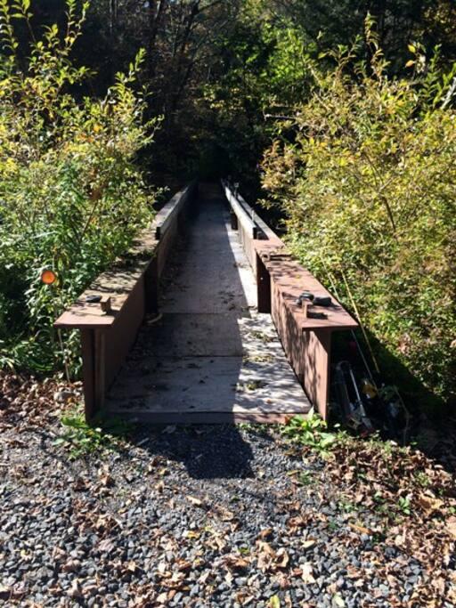 Cross the footbridge over the Mink Hollow stream.